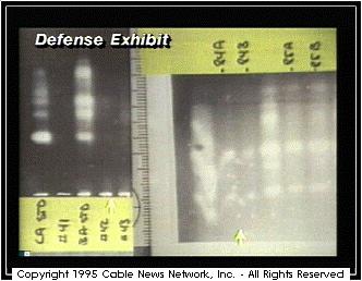 Oj Simpson Dna Evidence CNN O.J. Simpson...