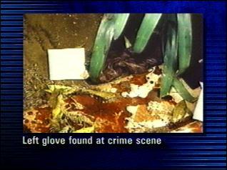 INDEX   SEARCH   CNN HOME PAGE   MAIN O.J. SIMPSON TRIAL PAGE   Oj Simpson Crime Scene Photos