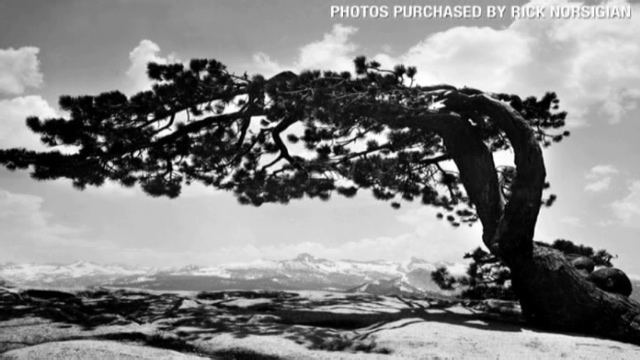 Controversy over lost ansel adams photos turns negative