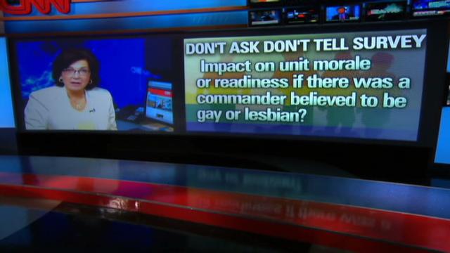 bit gay torrent
