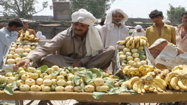 food shortage in pakistan essay