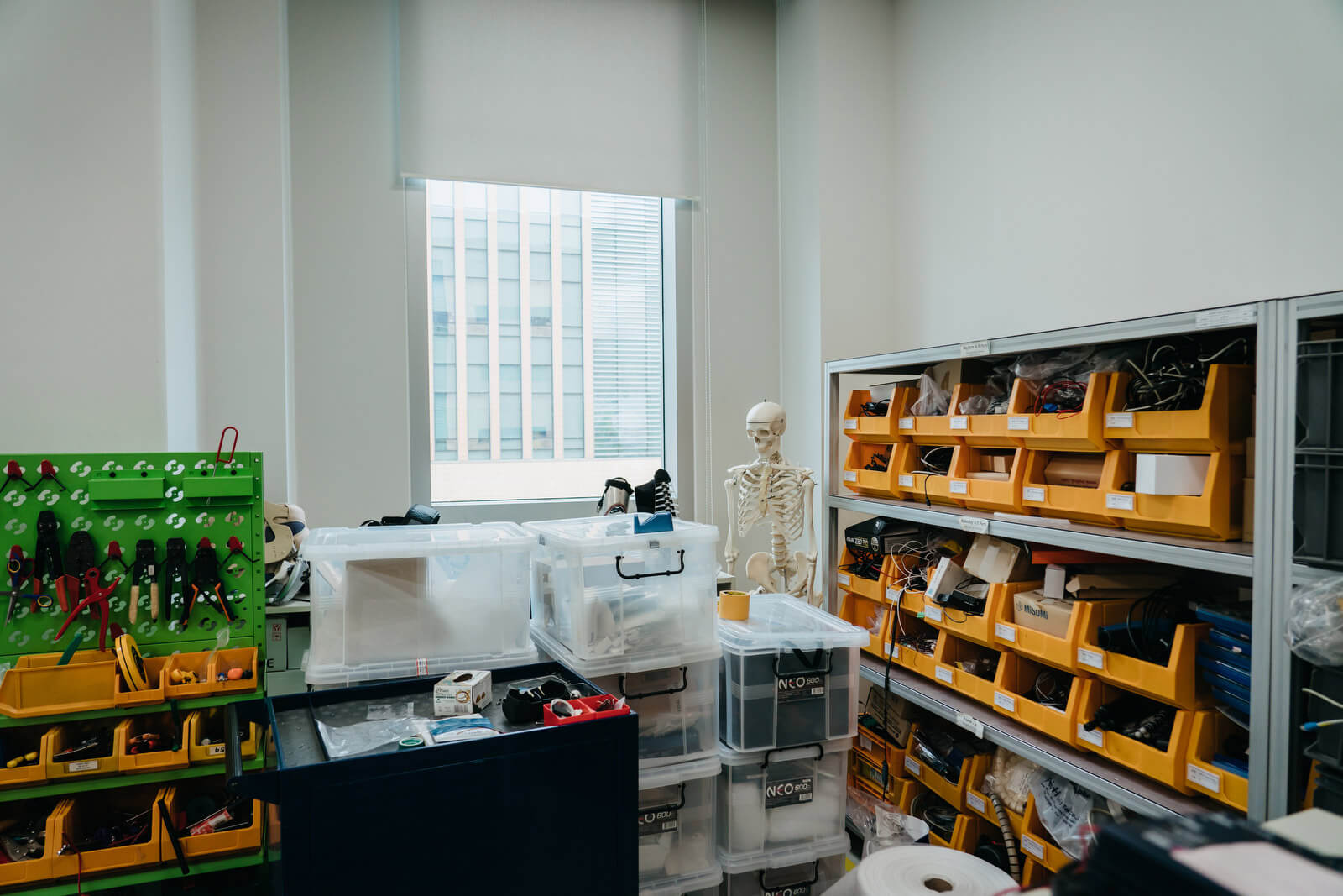 An anatomical model sits inside the storage area of the GEMS Lab.