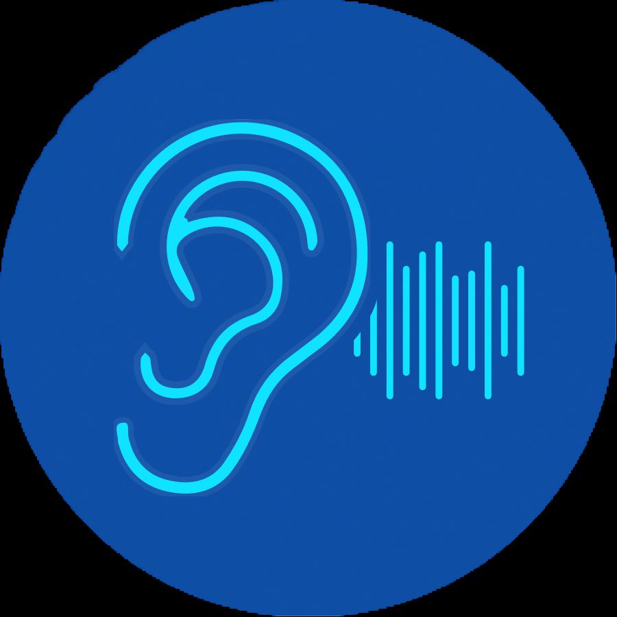 Spotting fake audio